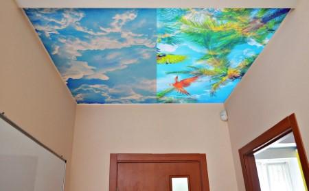 Натяжные потолки double vision – как сделать интерьер еще более оригинальным